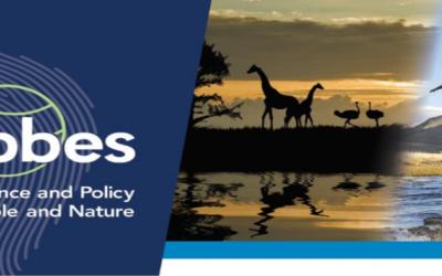 Cinq nouveaux rapports d'évaluation majeurs de l'IPBES
