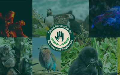 Réunion du Partenariat Mondial pour les Entreprises & la Biodiversité, le 07/11