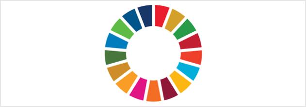 Programme de Développement Durable à l'Horizon 2030 de l'ONU