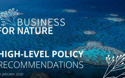 Business for Nature : Recommandations aux dirigeants politiques pour favoriser l'action des entreprises