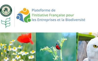 Actualités 2020/2021 de la Plateforme de l'Initiative Française pour les Entreprises et la Biodiversité