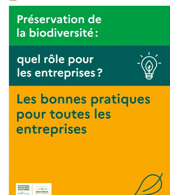 """MINISTÈRE DE LA TRANSITION ÉCOLOGIQUE (2020), """"Recueil bonnes pratiques pour toutes les entreprises"""""""